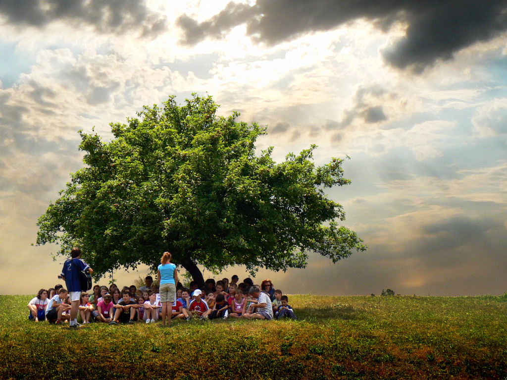 Kids Under A Tree
