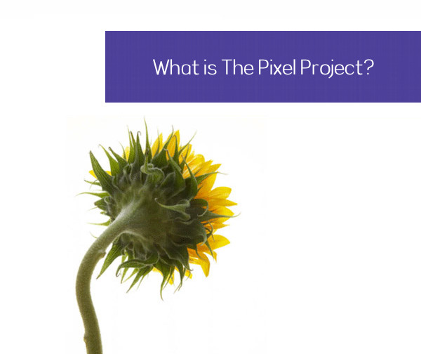 What is The Pixel Project?